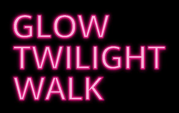 Twilight Walk, Blythe House Hospicecare